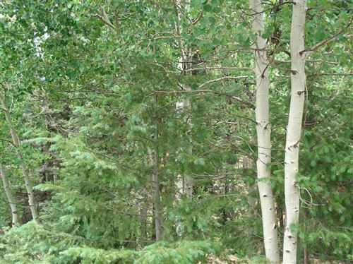 Photo of Lot 225 Vista Del Valle, Angel Fire, NM 87710 (MLS # 105265)