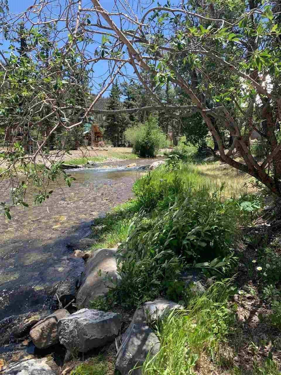 Photo for Dorris Gene Trail, Red River, NM 87558 (MLS # 105309)