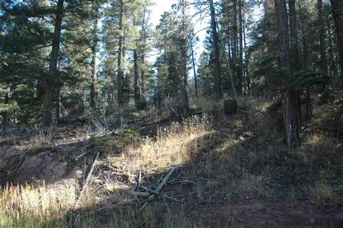 Photo of 238 summit place, angel fire, NM 87110 (MLS # 104310)