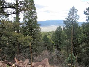 Photo of Lot 54 Taos Pines Ranch, Angel Fire, NM 87710 (MLS # 103318)