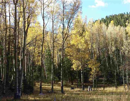 Photo of 62 Black Copper Canyon, Red River, NM 87557 (MLS # 106330)