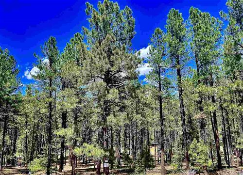Photo of Site 864 Conchas Dr, Angel Fire, NM 87710 (MLS # 106336)