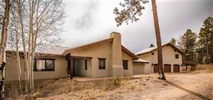 Photo of 161 Vail Loop, Angel Fire, NM 87710 (MLS # 103341)