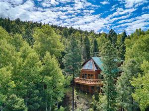 Photo of 261 El Camino Real, Angel Fire, NM 87710 (MLS # 102382)