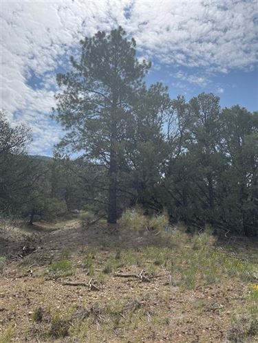 Photo of Off Echo Forest Rd, Questa, NM 87556 (MLS # 107391)
