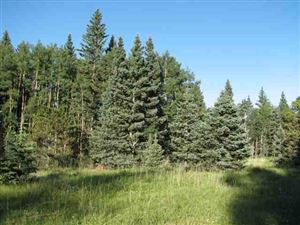 Photo of Lot 98 Pleasant Meadow Drive, Angel  Fire, NM 87710 (MLS # 103434)