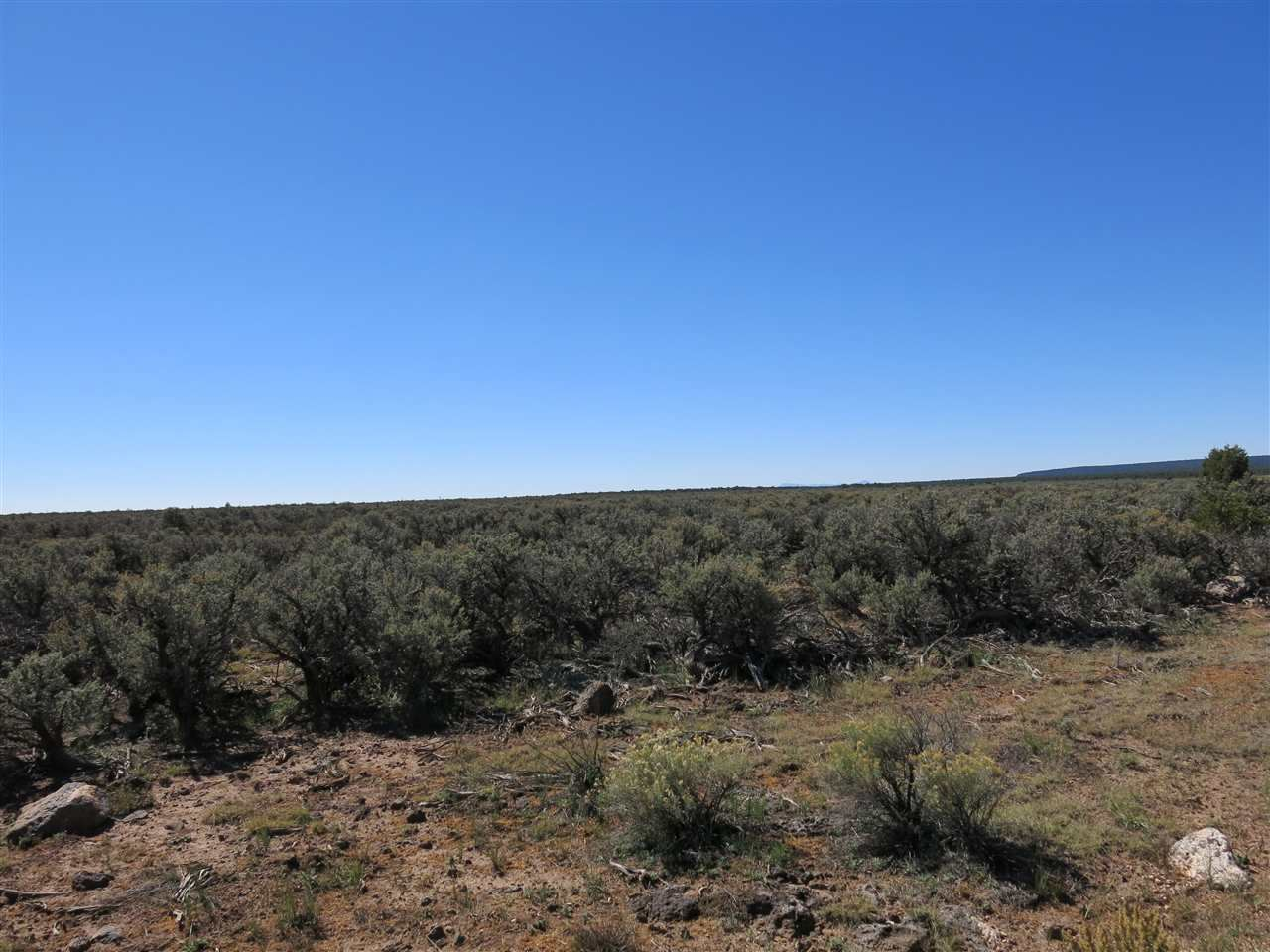 Photo for Lot 9 SERVILLETA SUB, TAOS, NM 87571 (MLS # 24439)
