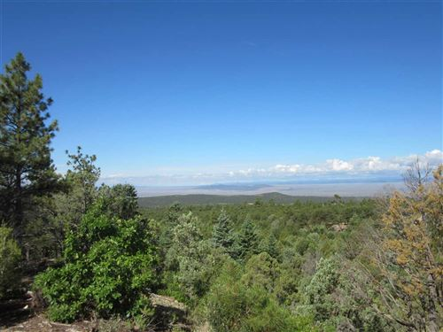 Tiny photo for DH Lawrence Road, San Cristobal, NM 87564 (MLS # 105465)