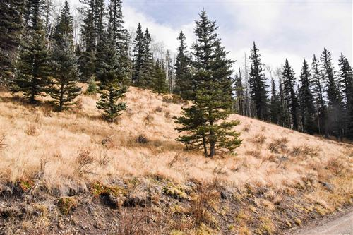 Photo of TBD Spruce Ave, Red River, NM 87558 (MLS # 107466)