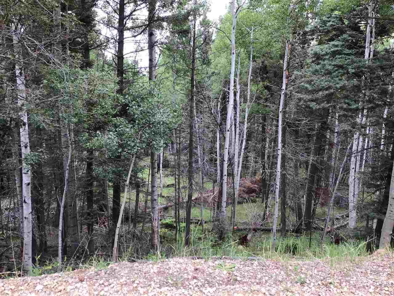 Photo for Lot 1169 Buena Vista Dr, Angel Fire, NM 87710 (MLS # 105479)
