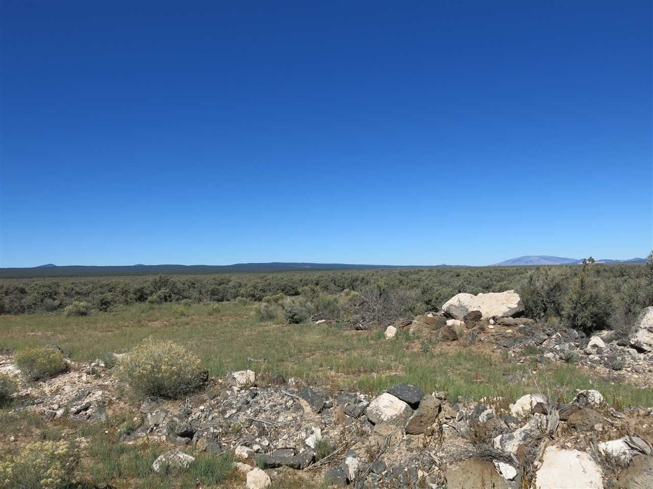 Photo for Lots 5 SERVILLETA SUBD, TRES PIEDRAS, NM 87571 (MLS # 20498)