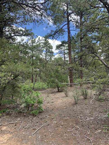 Photo of 00 North Lama Canyon Road, Lama, NM 87556 (MLS # 107499)