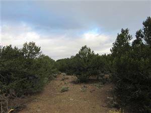 Photo of 19 Dulcimer, El Rito, NM 87556 (MLS # 102545)