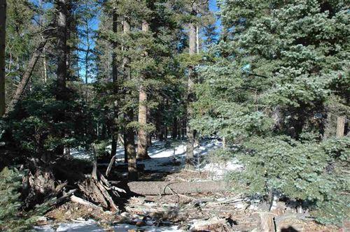 Photo of lot 8 Chalets I Back basin rd, angel fire, NM 87710 (MLS # 103583)