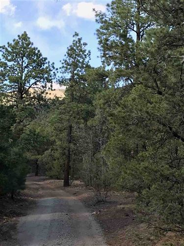 Tiny photo for Tract A-2 Turkey Springs Road, Valdez, NM 87580 (MLS # 101584)