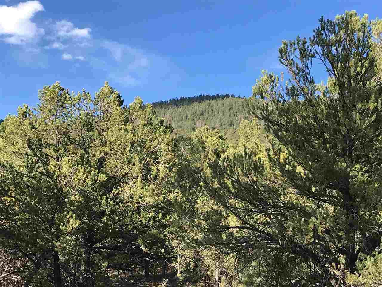 Photo for Tract A-2 Turkey Springs Road, Valdez, NM 87580 (MLS # 101584)