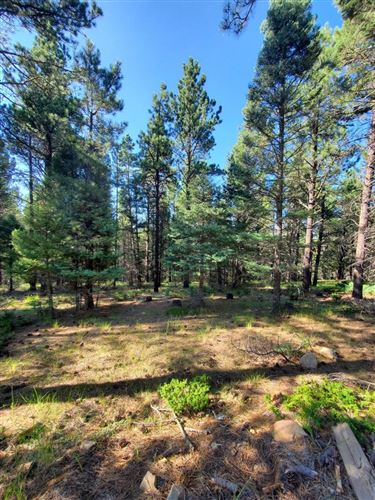 Photo of Lot 146 San Andres Dr, Angel Fire, NM 87710 (MLS # 107600)