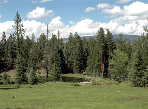 Tiny photo for 194 Acres Black Lake, Black Lake, NM 87710 (MLS # 100685)