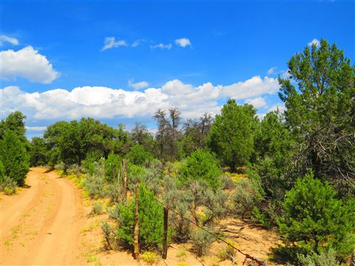 Photo of USFS Forest Road 556, Carson, NM 87517 (MLS # 107693)