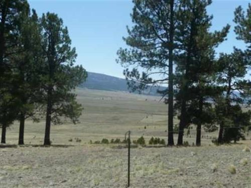 Photo of West Slope Acres Lot 16, Angel Fire, NM 87710 (MLS # 90695)