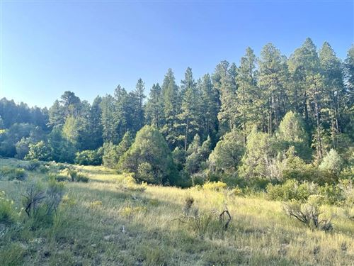 Photo of Upper Ojitos, Chamisal, NM 87521 (MLS # 107699)