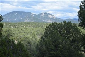 Photo of Canoncito Road Lot 7, Valdez, NM 87580 (MLS # 103744)