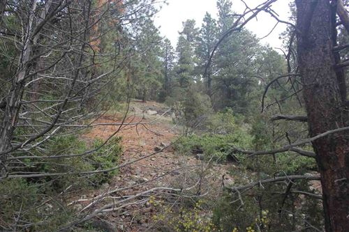 Photo of tracts B Highway 64, Taos, NM 87571 (MLS # 105755)