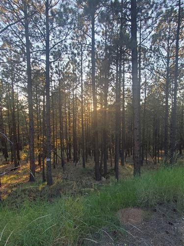 Photo of Lot 160 Aspen, Angel Fire, NM 87710 (MLS # 107759)