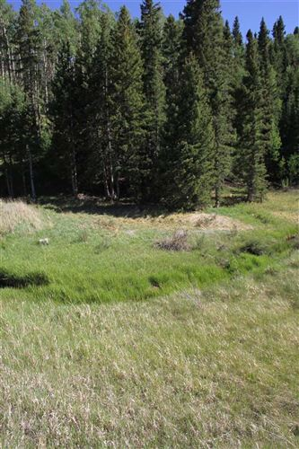Tiny photo for lot 8 Valle Verde, Red River, NM 87558 (MLS # 101811)