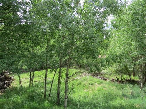Photo of TBD El Camino Real Lot 202, Angel Fire, NM 87710 (MLS # 106817)