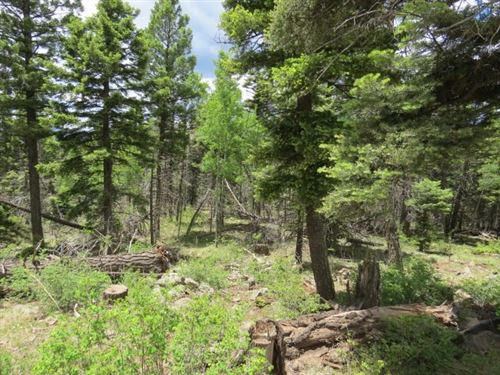 Photo of TBD Panorama Way Lot 1156, Angel Fire, NM 87710 (MLS # 106857)