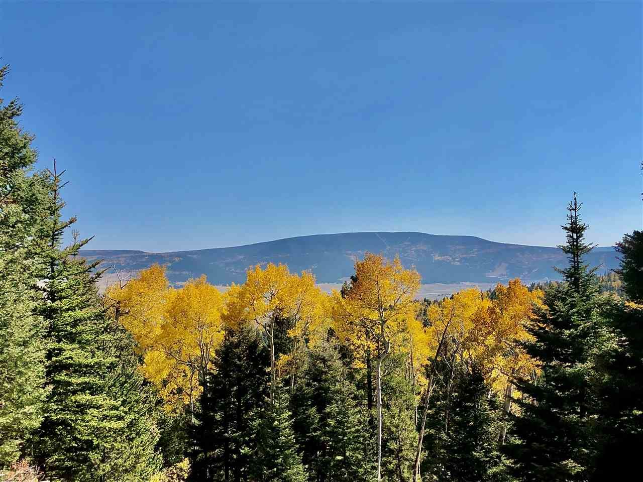 Photo for Lot 97 Pam Coleman Drive, Angel Fire, NM 87710 (MLS # 104873)