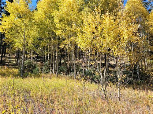 Photo of Lot 156 Circle Drive, Taos, NM 87571 (MLS # 107877)