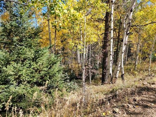 Photo of Lot 174 Valle Escondido, Taos, NM 87571 (MLS # 107883)