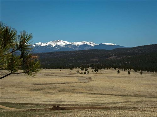 Photo of Shields Area 40 Acres, Black Lake, NM 87722 (MLS # 106907)