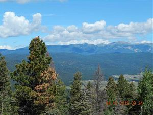 Photo of 316 South Vail Overlook, Angel Fire, NM 87710 (MLS # 103952)