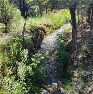 Photo of 63 Tract A Acequia Madre Del Llano Rd, Arroyo Hondo, NM 87513 (MLS # 103984)