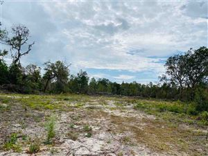 Photo of 0 Dennis Howell Road, PERRY, FL 32348 (MLS # 312018)