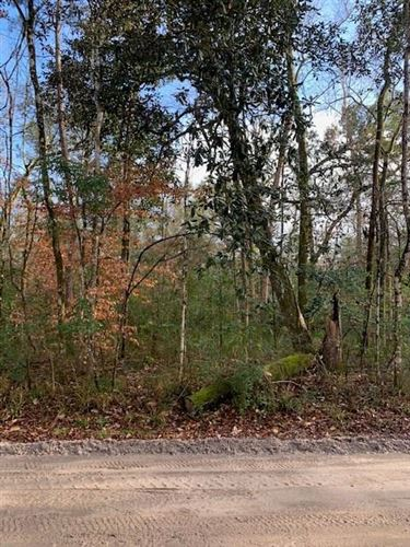Photo of 0 Mysterious Waters Road, CRAWFORDVILLE, FL 32327 (MLS # 329028)