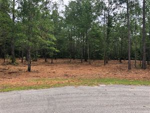 Photo of Goldenrod Drive, ST MARKS, FL 32326 (MLS # 306031)