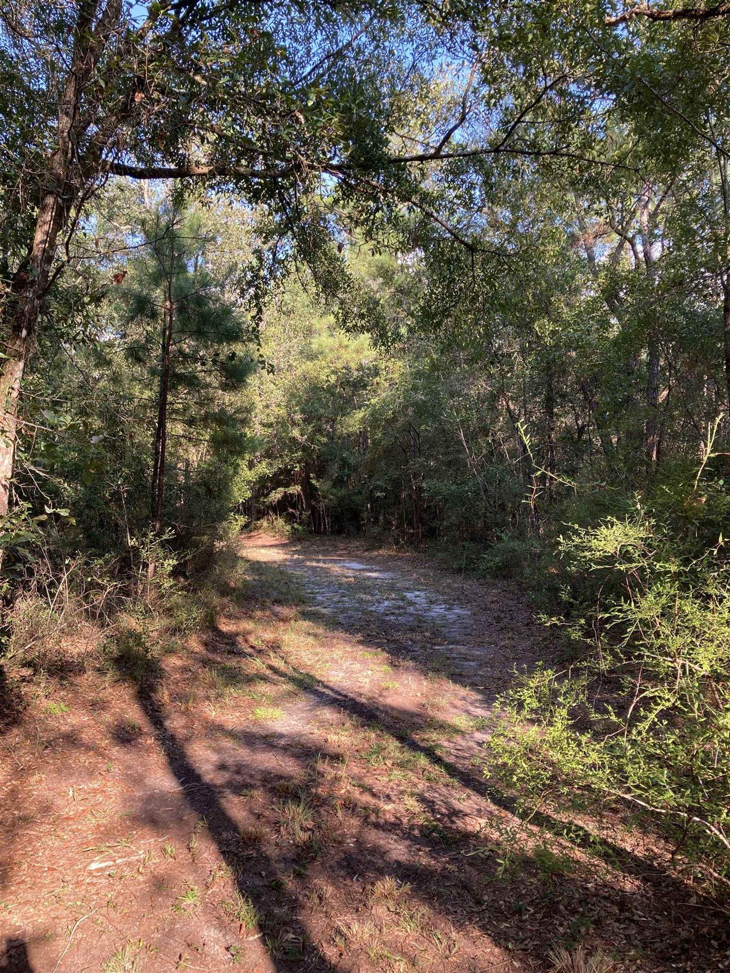 Photo of 14891 Buddy Rowan Dr, TALLAHASSEE, FL 32310 (MLS # 337045)