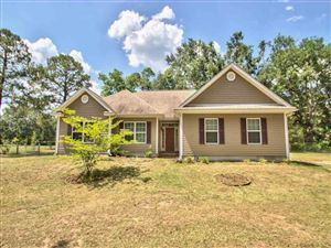 Photo of 13980 SLOAN Road, TALLAHASSEE, FL 32312 (MLS # 307060)