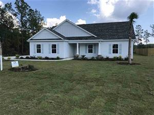 Photo of 3 Arran Strickland Road, CRAWFORDVILLE, FL 32327 (MLS # 300106)