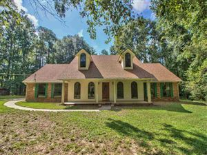 Photo of 4573 Scawthorn Drive, TALLAHASSEE, FL 32303 (MLS # 310121)