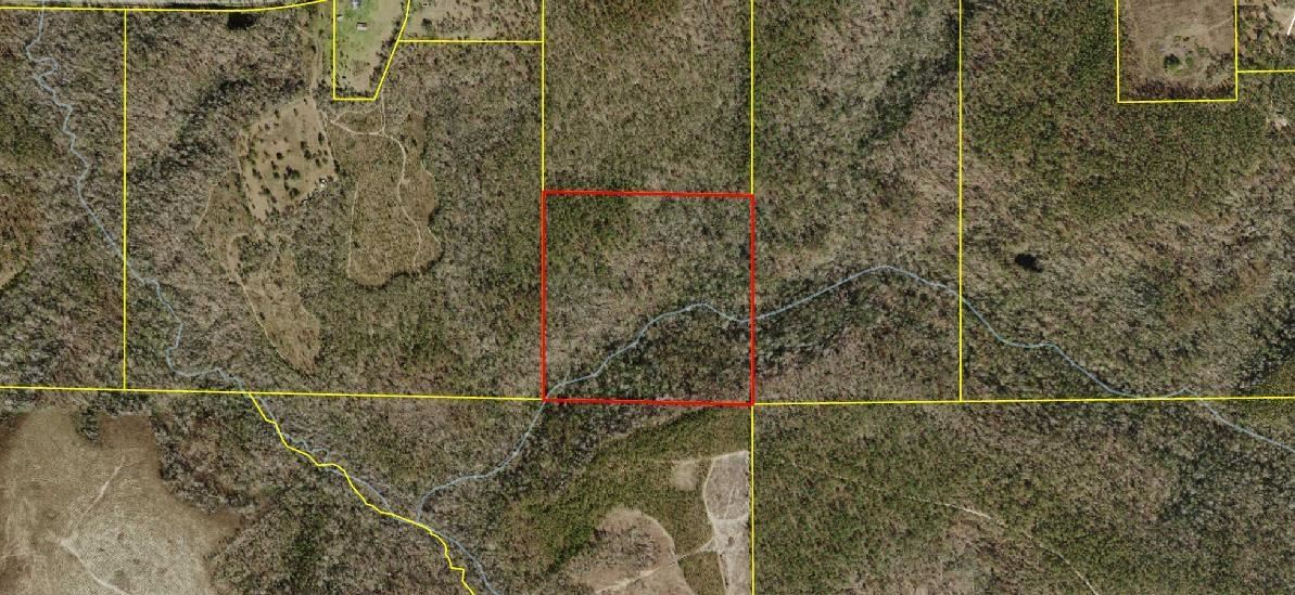 Photo of Sycamore Road, QUINCY, FL 32351 (MLS # 338128)
