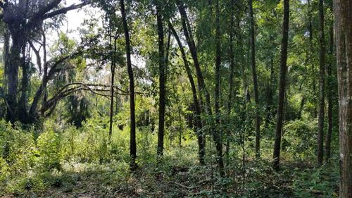 Photo of 0 Ed Wilson Lane #0, TALLAHASSEE, FL 32312 (MLS # 322158)