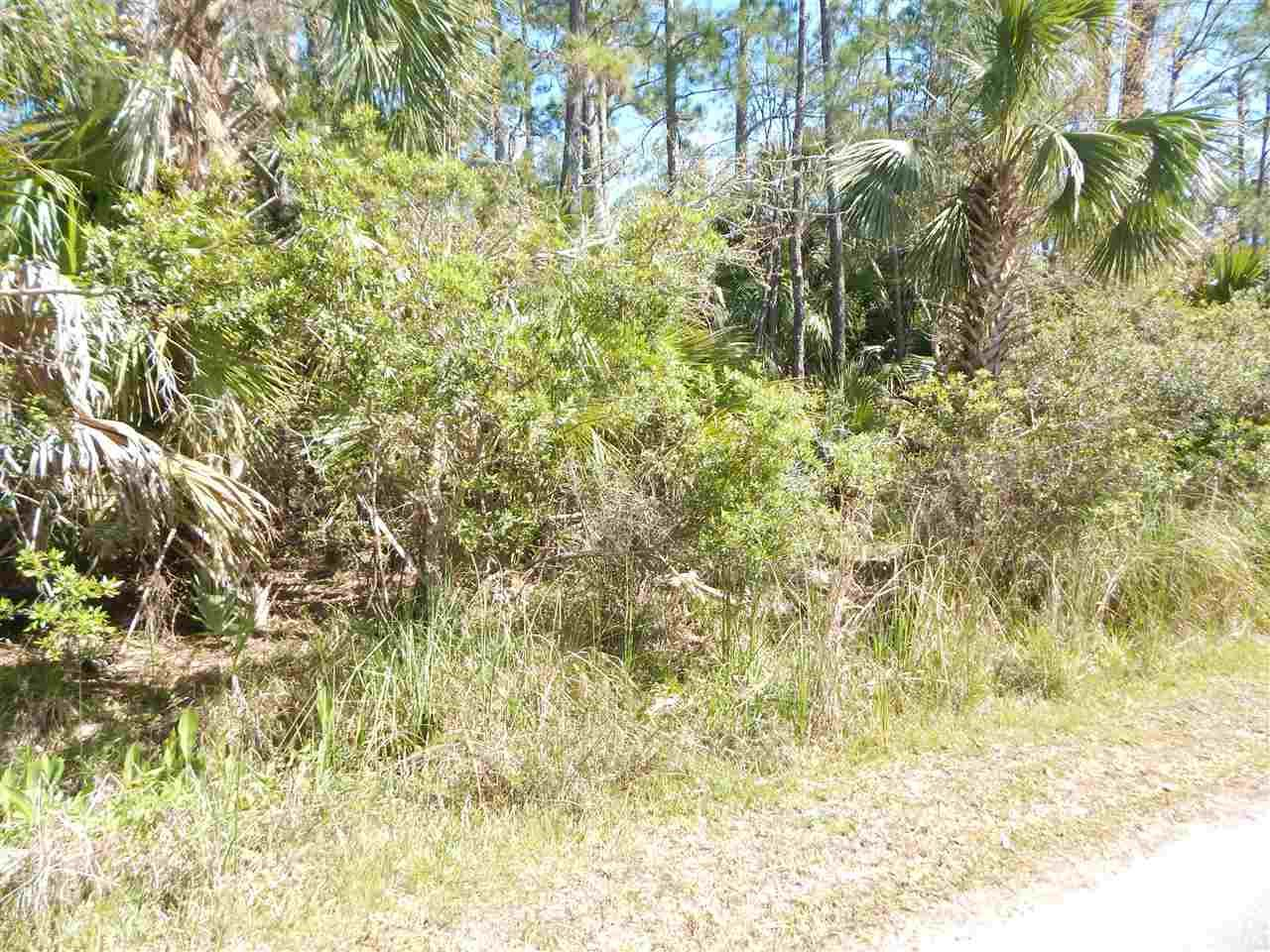 Photo of 00 FORBES Street #-, ST MARKS, FL 32355 (MLS # 304283)