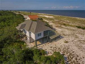 Photo of 802 Bald Point Road, BALD POINT, FL 32346 (MLS # 306311)