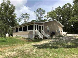 Photo of 40048 SW Forest Rd. 181, SUMATRA, FL 32321 (MLS # 307316)