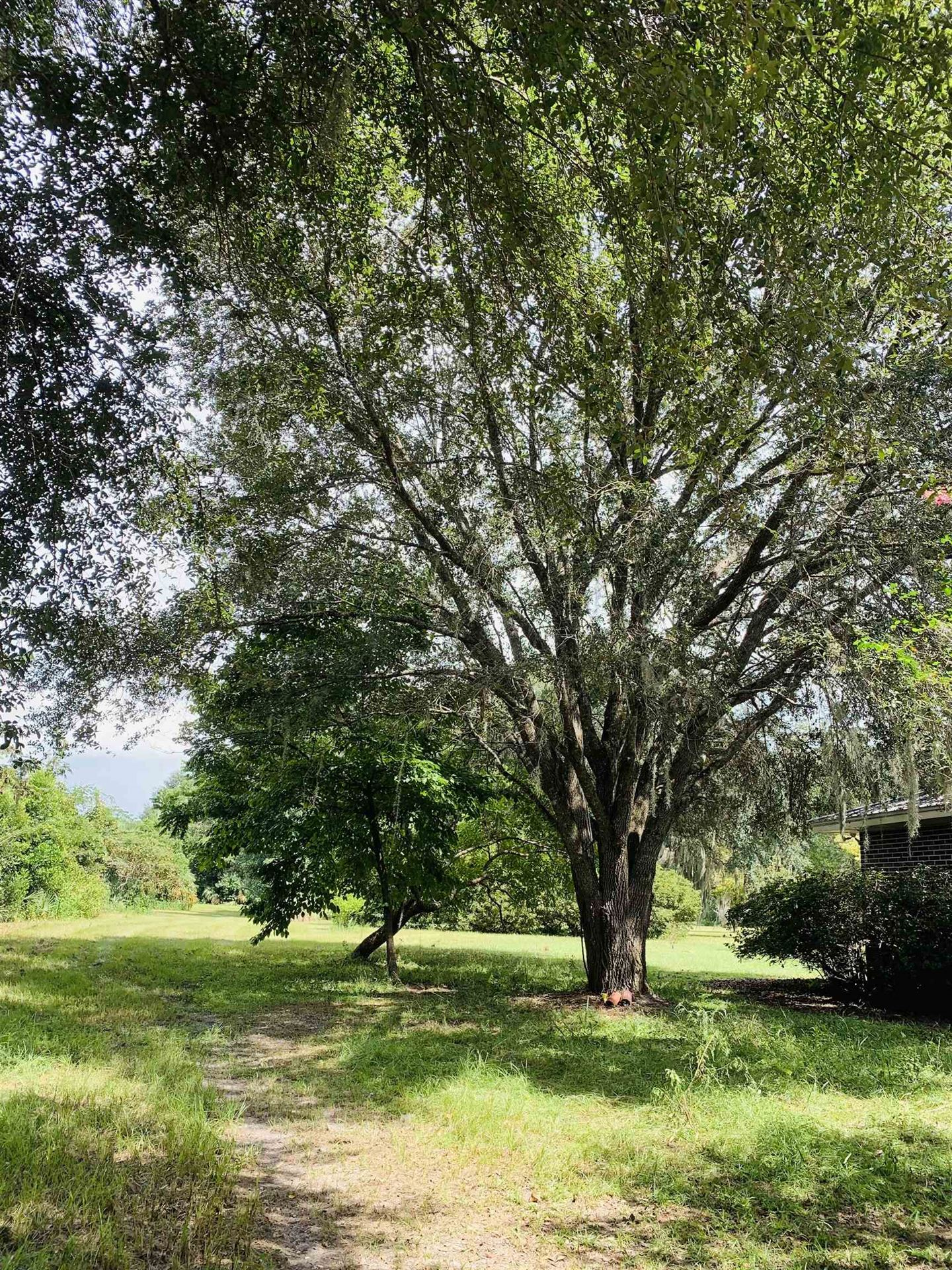 Photo of 3475 CASH RD Road, PERRY, FL 32348 (MLS # 337318)